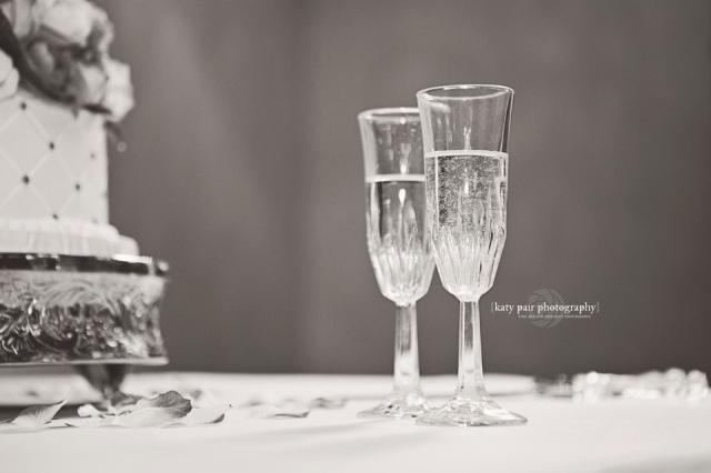 2014, 5-3 Stojakovic wedding_483bw