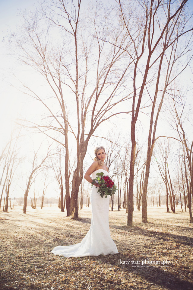2014, 3-10 Whitney Huseman bridals-116