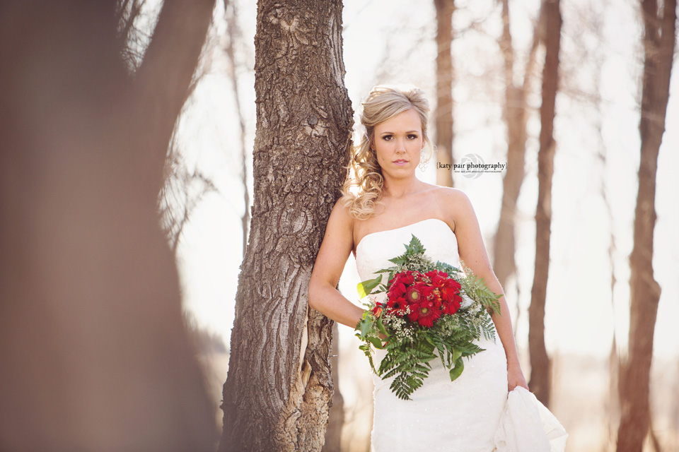 2014, 3-10 Whitney Huseman bridals-151