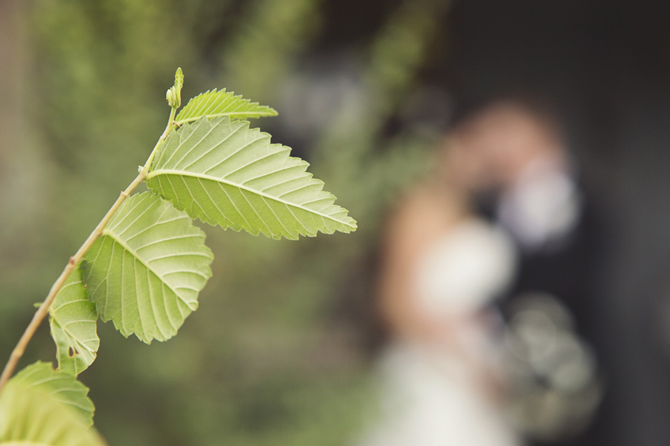 2014, 8-30 Amosson Wedding-229