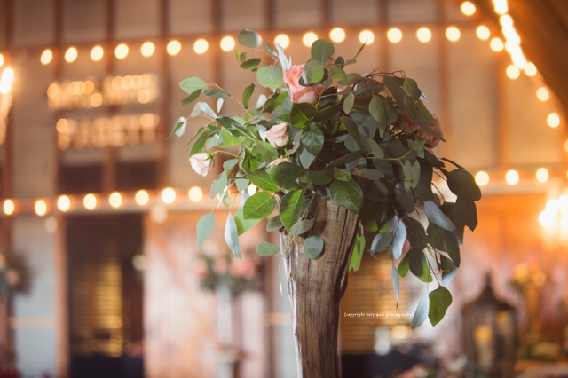 2016, 5-14 Pagett Wedding_244