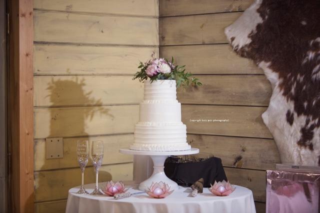2016-8-6-jessica-isaac-wedding_552